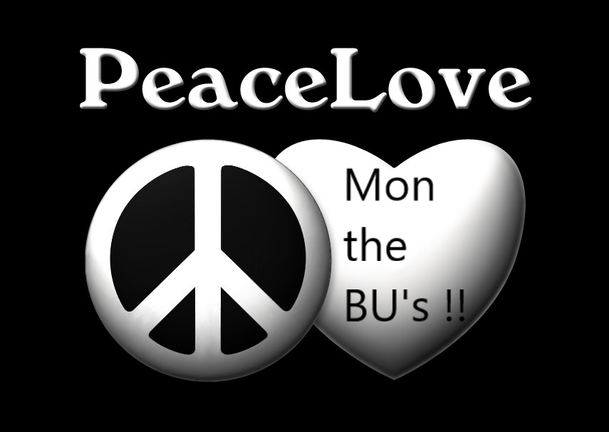 peace love BUs.png